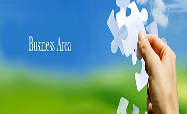 Areas of Business